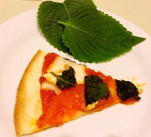 ピザ(修正案)